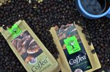 Filtered coffe from South Inida